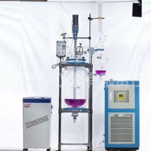 予华仪器反应釜/反应器YSF标准型变频调速双层玻璃反应釜价格 品牌