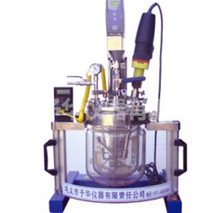 巩义予华仪器实验室均质乳化系统反应器Reactor-5L