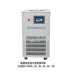 DLSB低温冷却液循环泵 厂家定做大容量低温泵