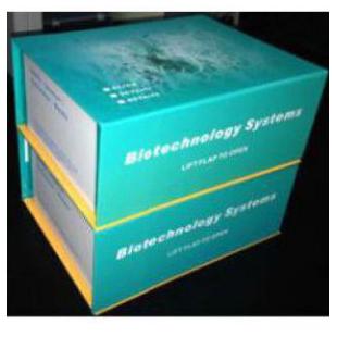 人趋化因子Fractalkine(Fractalkine/CX3CL1)试剂盒48T