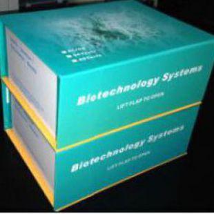 大鼠肾损伤分子(rat Kim-1)试剂盒48T