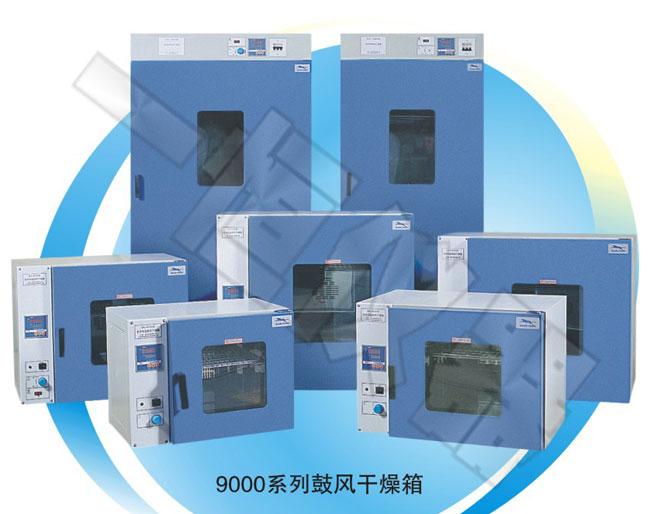 DHG-9140(A)(101-2)鼓风干燥箱