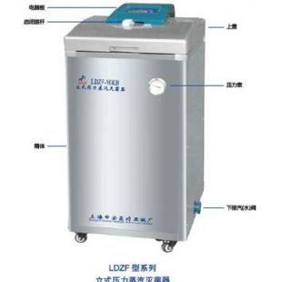 LDZF-30L30立升立式壓力蒸汽滅菌器
