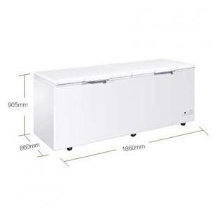 卧式大容量保鲜冷冻两用冷柜