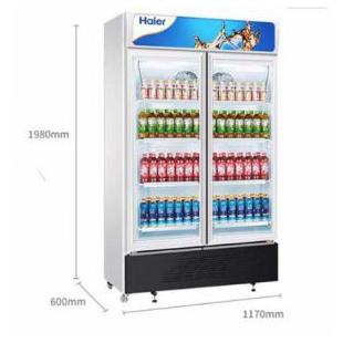 商用展示柜冷藏保鲜柜啤酒冷饮冷柜立式双门展示柜玻璃门冰柜风冷无霜