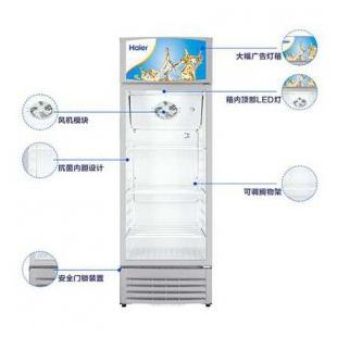 冷柜透明玻璃門飲料柜冰柜商用展示柜冷藏柜立式