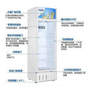 SC-300冷��保�r��商用冷藏�料��立式�伍T展示冷��水果啤酒冰���L冷�伍T保�r冰��