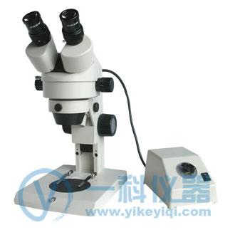 XTL-165-VB体视显微镜