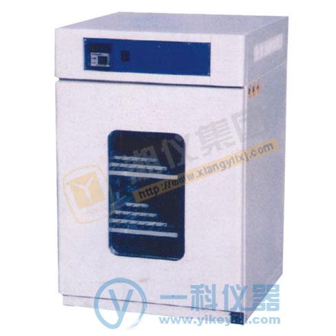 DPX-100电热恒温培养箱