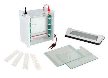 JY-SCZ6+型双垂直电泳槽