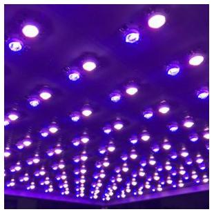 九圃四色LED植物補光燈