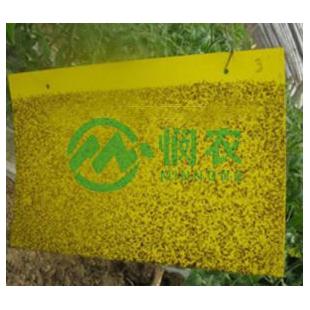 粘虫板,杀虫板,诱虫杀虫板