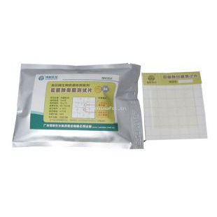 绿洲生化 霉菌酵母菌测试片 24片/包