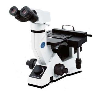 GX41经济型倒置显微镜