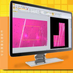 Image-Pro Insight图像分析软件
