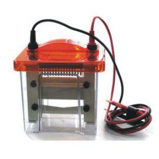 Mini VE1600迷你垂直電泳槽(蛋白電泳槽)
