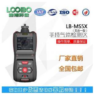 LB-MS5X泵吸五合一多气体检测仪