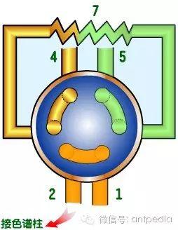几种气相色谱仪进样系统的结构和性能
