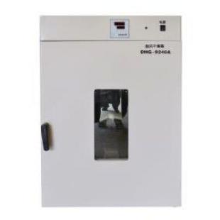 立式鼓風干燥箱 DHG-9245A(240L)