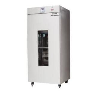 立式鼓風干燥箱 DHG-9420A(420L)
