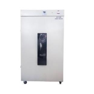 立式鼓風干燥箱 DHG-9620A(620L)