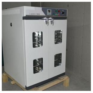 立式鼓风干燥箱 DHG-1200AE(1200L)