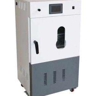 全自動真空干燥箱DZF-6050C(50L)