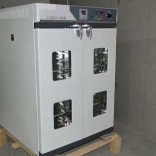 捷呈II型立式鼓风干燥箱DHG-3000AE
