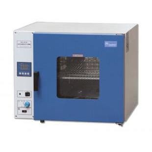 禾普恒温鼓风干燥箱DHG-9030A
