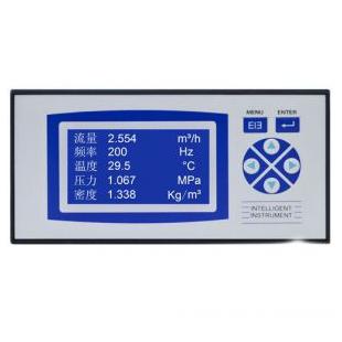 DKS-F2000X液晶型智能流量積算儀