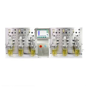T&J-Qtype平行生物反应器