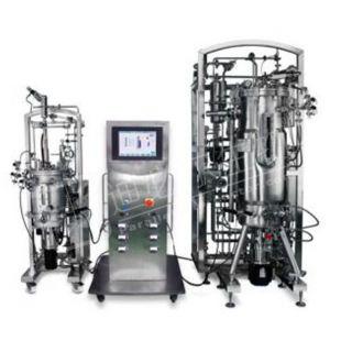 T&J-D-typeub8优游登录娱乐官网试型发酵和生物反应器ub8优游登录娱乐官网统