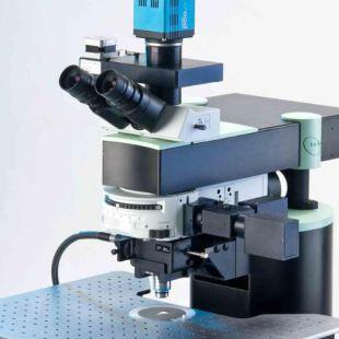 德国LaVision BioTec---双光子显微镜TriM Scope