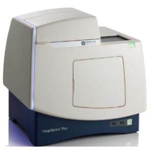 美国Molecular 自动细胞成像ImageXpress Pico