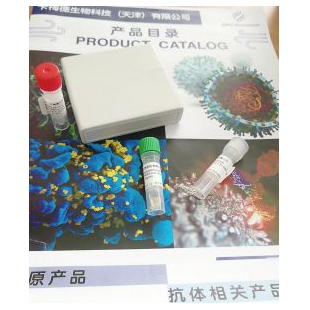Recombinant Human anti-COVID-19/SARS-CoV-2 S1 NTD