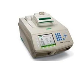 美国伯乐S1000touch 96孔快速PCR 仪