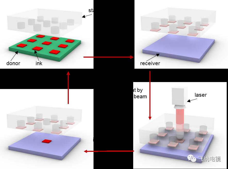 飞纳电镜助力浙江大学宋吉舟教授团队探索新型转印技术