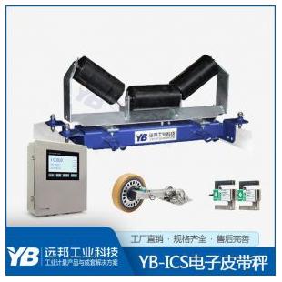 远邦工业科技 YB-ICS-30电子皮带秤