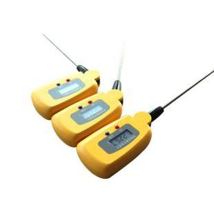 ZT-SZW高精度数字温度计