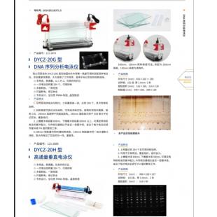 北京辙辕DYCZ-20H型高通量垂直电泳仪
