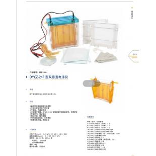 北京轍轅DYCZ-24F型雙垂直電泳儀