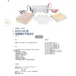 北京辙辕DYCP-31E型琼脂糖水平电泳仪(中号)
