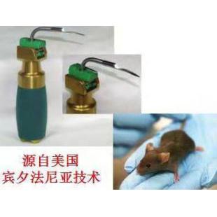 小動物喉鏡,咽喉鏡,氣管插管喉鏡