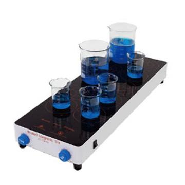美国精骐多点加热型磁力搅拌器MS-10H