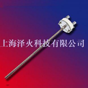 ATEX 本安防爆认证可更换的铂电阻测温插芯R205-Ex