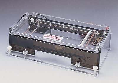 Thermo Scientific A2 Non-recirculating cell, 20 x 25 cm gel size