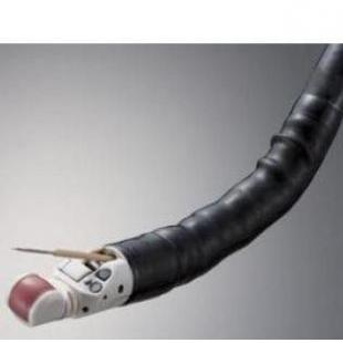 �W林巴斯超混蛋��子胃�RGF-UE260-AL5