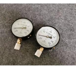 天津华泰科技仪表Y-100 压力表