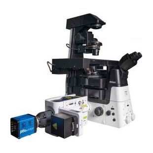 尼康  CSU-X1共聚焦显微镜