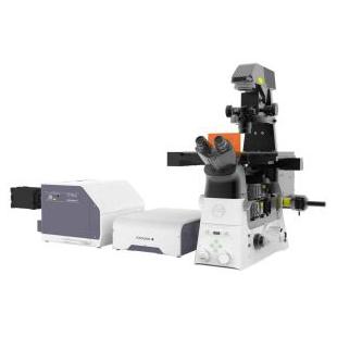 尼康   CSU-W1 SoRa共聚焦显微镜